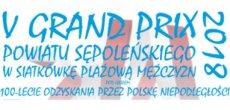 V Grand Prix Powiatu Sępoleńskiego w Siatkówkę Plażową Mężczyzn