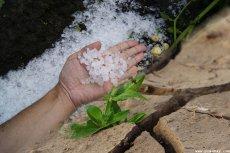 Informacja na temat wystąpienia niekorzystnych zjawisk atmosferycznych (gradobicie, susza) na terenie Gminy Sośno