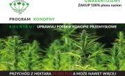 Rolniku! uprawiaj polskie konopie przemysłowe