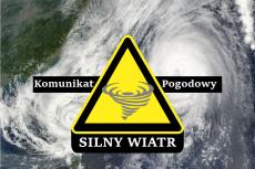 Ostrzeżenie meteorologiczne Nr 6/2020 - Silny wiatr