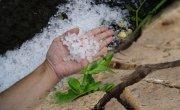 Informacja dla rolników z gminy Sośno - warunki ogłaszania klęski suszy